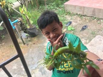 Cambodia - 153